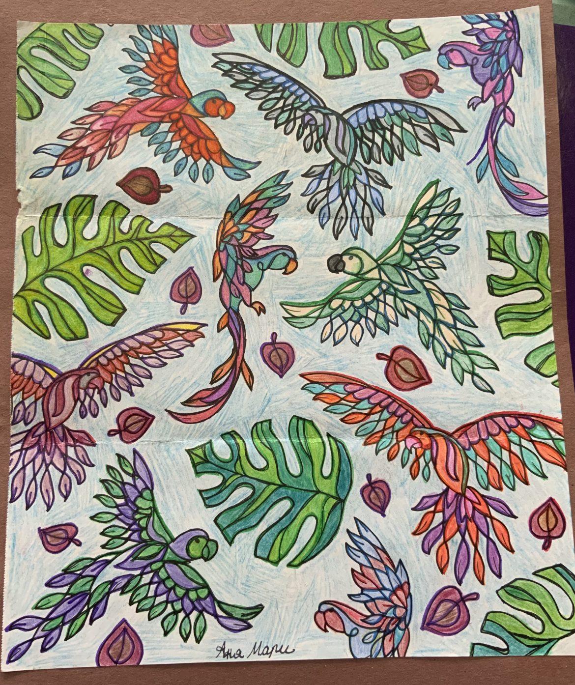 Bountiful Birds