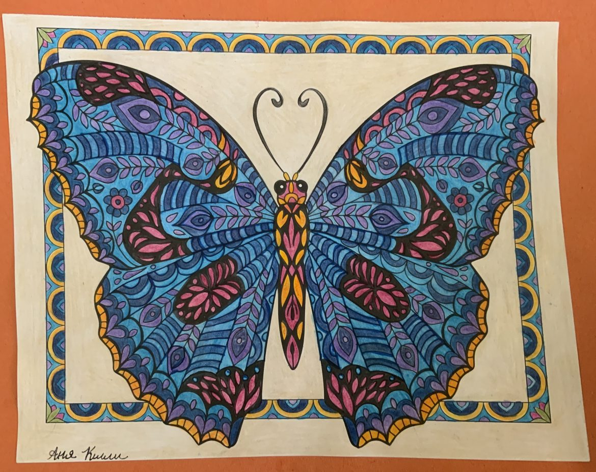 Boundless Butterfly