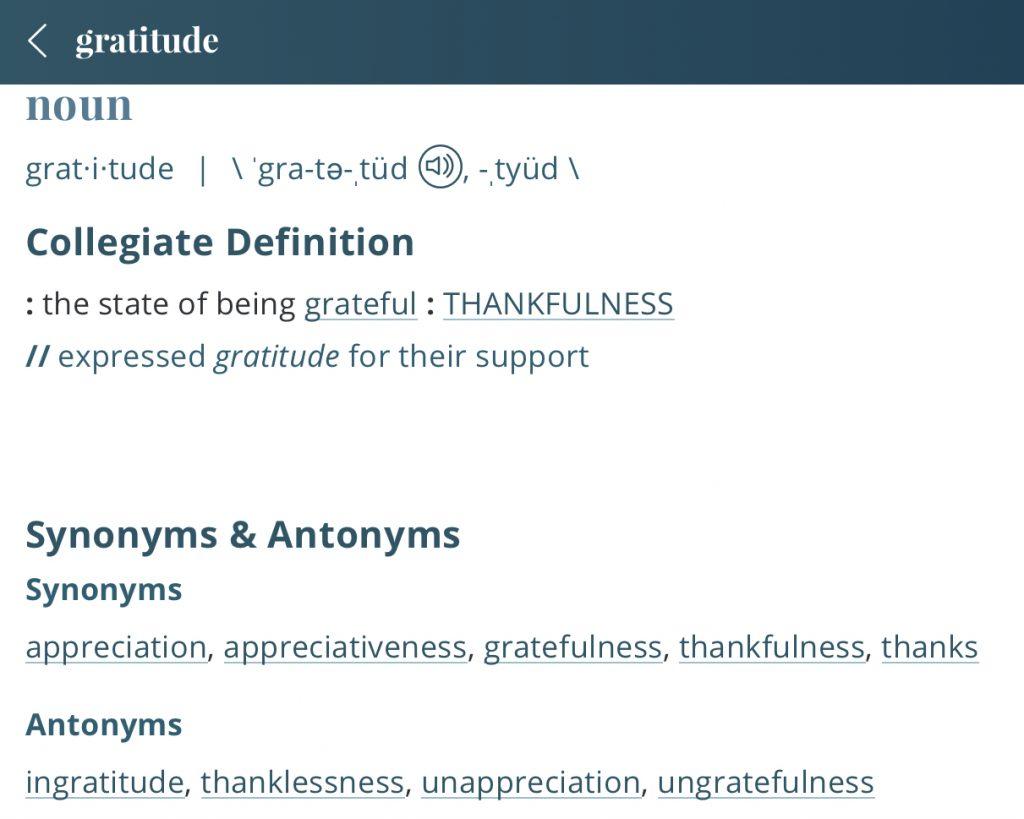 Definition-gratitude