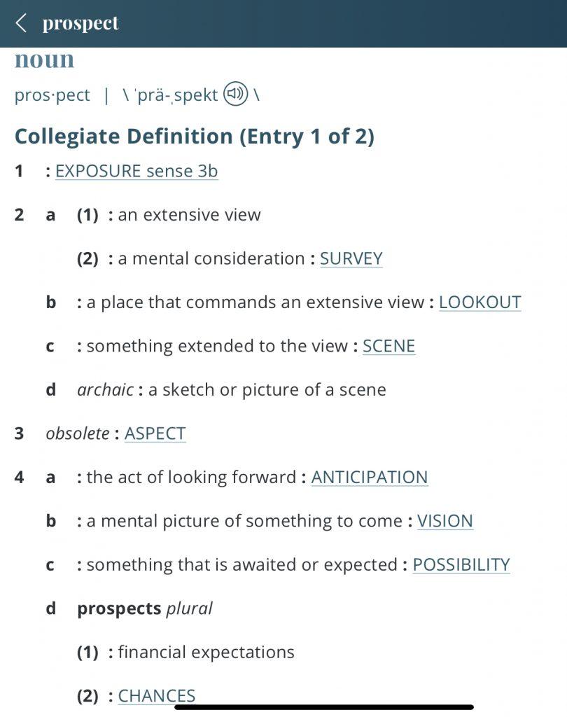 Definition-prospect