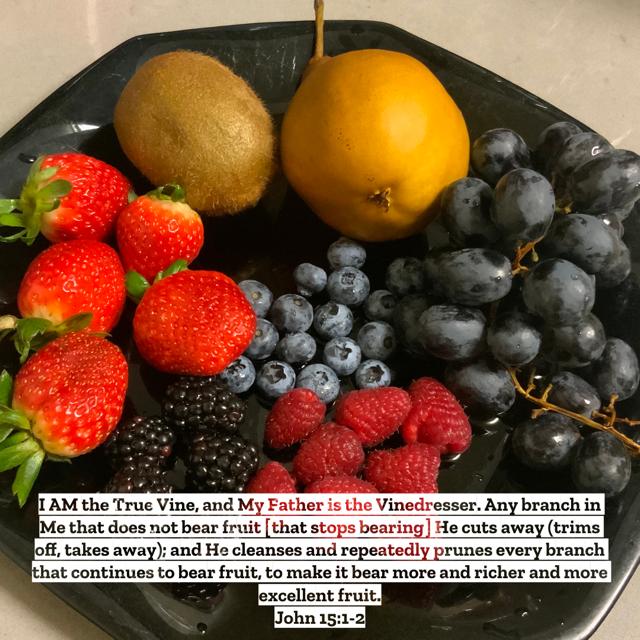 John-15:1-2-Yummy-fruit-plate