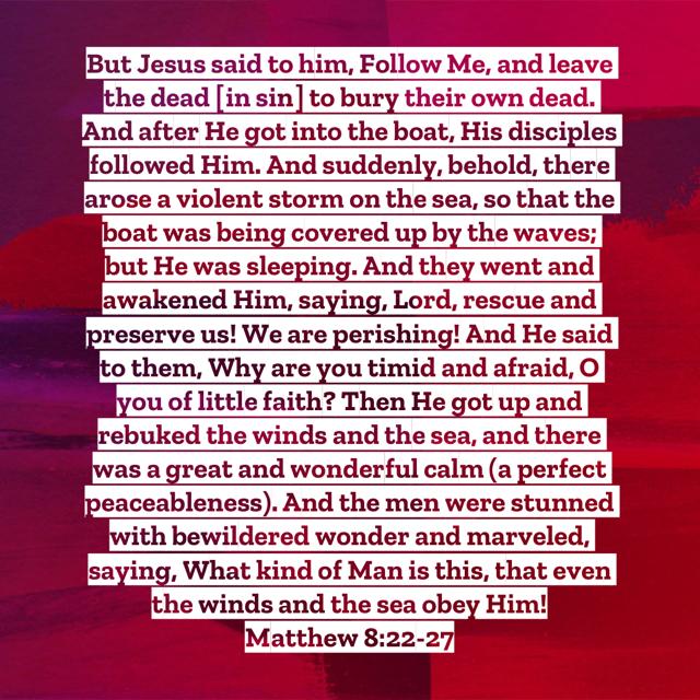 Matthew8:22-27