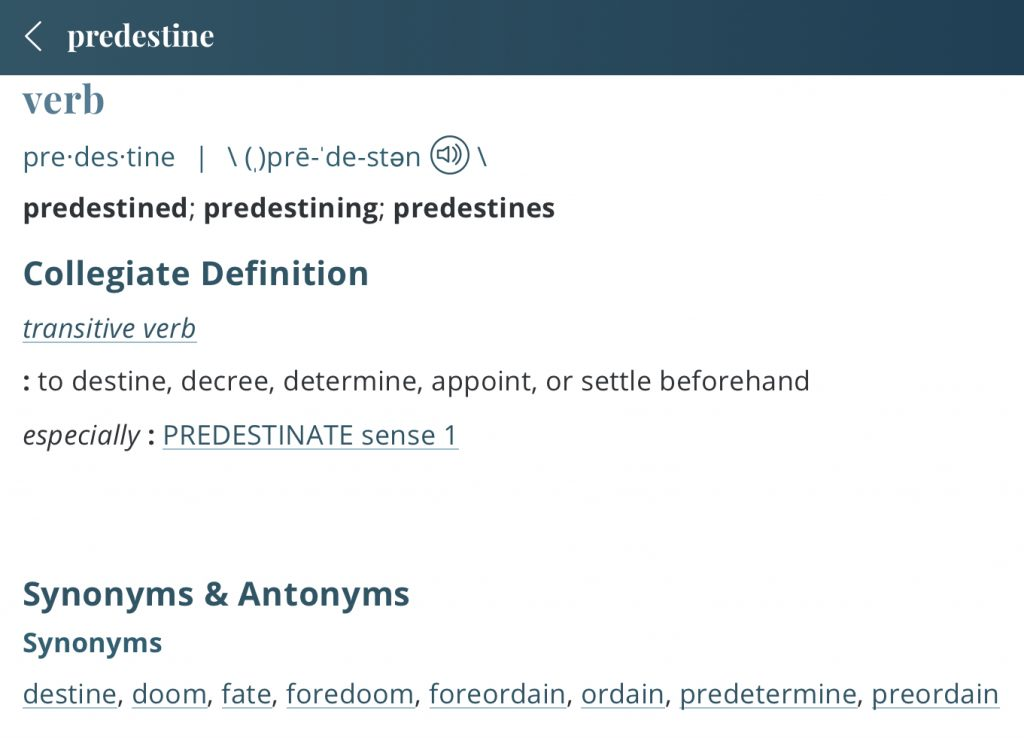 definition-predestine