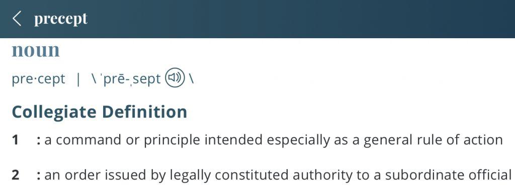 definition-precept
