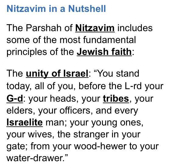 Nitzavim-Parshah-guide-1